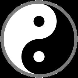 A természet erőinek ellentétes pólusait,  a pólusok egységét ősidők óta a jin-jang ellentétpárral  ábrázolja a hagyományos kínai gondolkodás