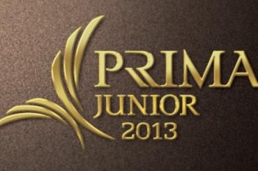 Tóka Ágoston 2013-ban Junior Prima díjban részesült